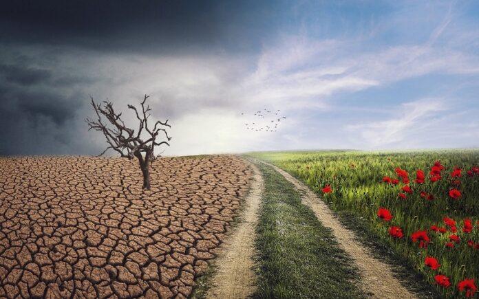 जलवायु परिवर्तन के कारण और संभावित परिणाम